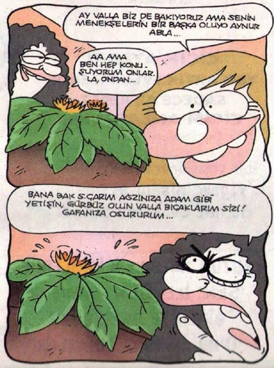 Karikatür...