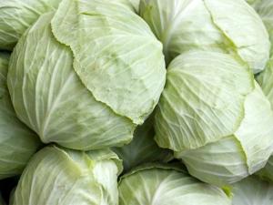 beyaz-lahana-2