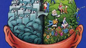 Beyniniz-kadın-mı-Erkek-300x168
