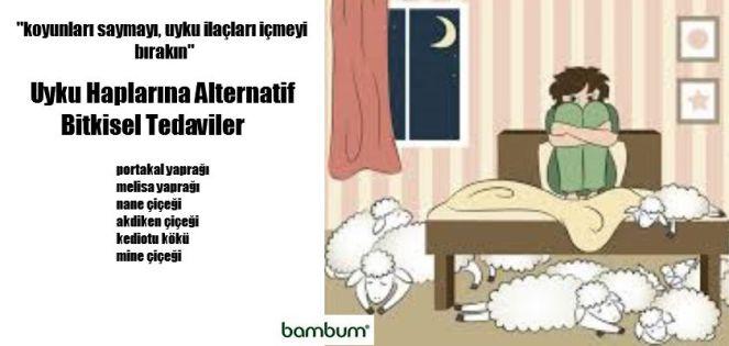 Uyku-Haplarina-Alternatif-Bitkisel-Tedaviler