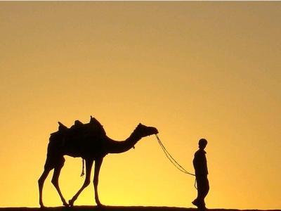 camel-deve-kervan