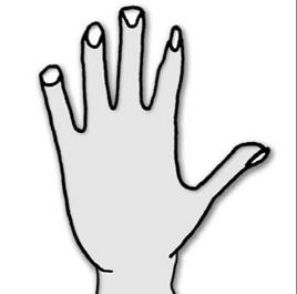 karışık eller